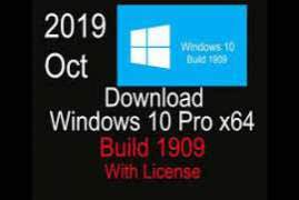 Windows 10 Professional x86 RecNight - Preactivated